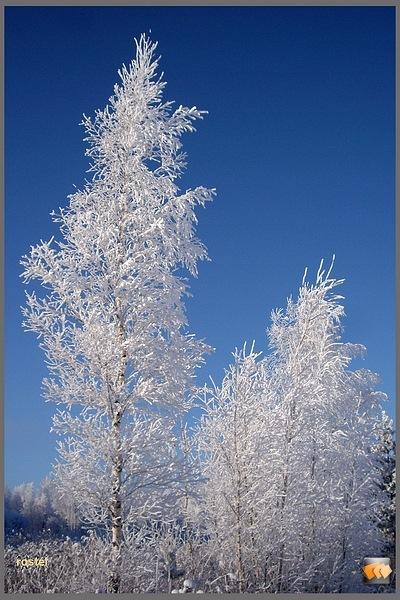 И в гараже зеркало приукрасилось.  Вот прогулялся сегодня по окрестностям.  Морозец приятный, не холодно...