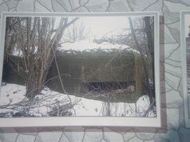 http://data6.gallery.ru/albums/gallery/98825--13189163-h200.jpg